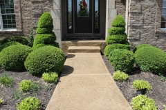 concrete walkway with stamped overlays